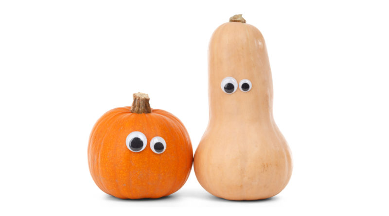 Pumpkin Friends - Public Domain Picture