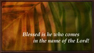 Palm Sunday Celebration @ The Greenhouse | Bokarina | Queensland | Australia