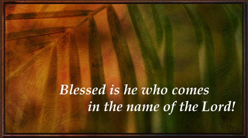 Image 'Palm Sunday' by Russell Chris, downloaded from Flikr. Used under license, Attribution-NonCommercial-ShareAlike 2.0 Generic (CC BY-NC-SA 2.0) https://creativecommons.org/licenses/by-nc-sa/2.0/ Text added (NIV)