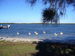 KKs @ Pumistone Passage (Tripcony Lane Jetty) | Caloundra | Queensland | Australia